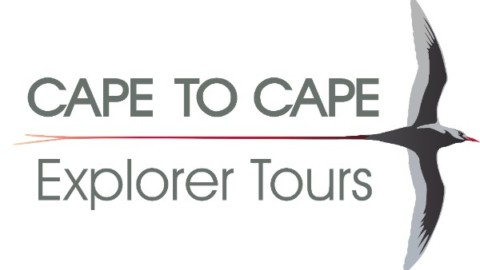 Welcome to Cape to Cape Explorer Tours