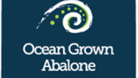Welcome to Ocean Grown Abalone