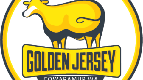 Welcome to Golden Jersey!